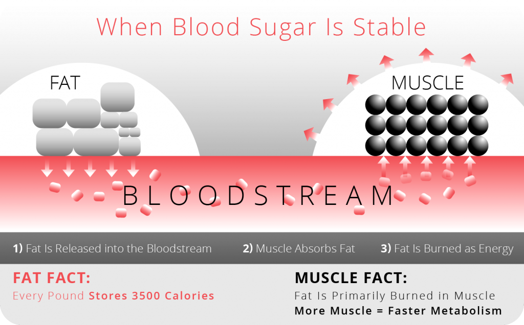 VN-Graphics-When-Blood-Sugar-is-Stable-two-color