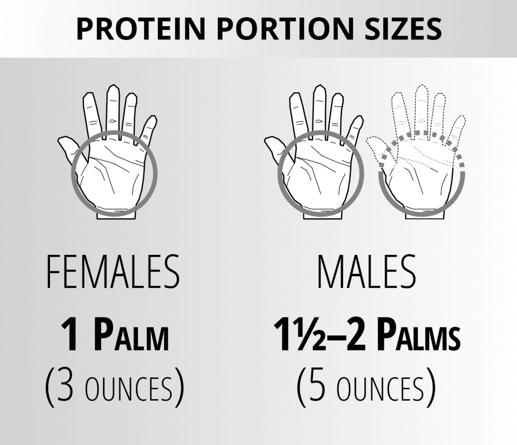 Ignite Phase Protein Portion Sizes